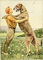 The book of dogs; an intimate study of mankind's best friend (1919) (20402967501).jpg