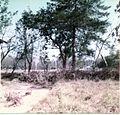 The football field from my garden (3070177589).jpg