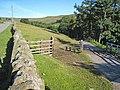 The road down to Bollihope Shield - geograph.org.uk - 510405.jpg