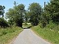 The road heading towards Clopton Hall - geograph.org.uk - 1390353.jpg