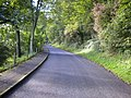 The road up to Oliver's Mount that runs up the side of Deepdale - geograph.org.uk - 253663.jpg