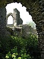 The ruins of St Mary's Priory - geograph.org.uk - 790331.jpg