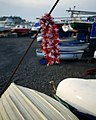 Tinsel, Groomsport harbour - geograph.org.uk - 1638168.jpg