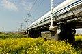 Tokaido Shinkansen Akabuchi-gawa BL 02.jpg