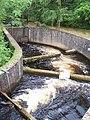 Tongland Dam fish ladder - geograph.org.uk - 1241590.jpg
