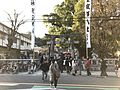 Torii of Kasuga Shrine in Kasuga, Fukuoka 20170101.jpg