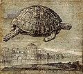 Tortoise above Venetian lagoon, Melchior Lorch, 1555.jpg