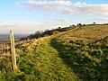 Towards Ditchling Beacon - geograph.org.uk - 614165.jpg