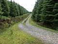Track down Bealach nan Cabrach - geograph.org.uk - 20579.jpg