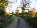 Track to Bandland Farm - geograph.org.uk - 389918.jpg