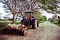 Tractor on a road in Aguadilla, Puerto Rico.jpg
