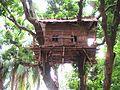 Tree house at natore rajbari.jpg