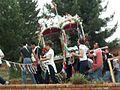Troina, Festa dei rami - panoramio.jpg