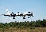 Tupolev Tu-142MZ.jpg