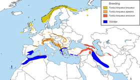 Turdus torquatus distribution map.png