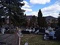 Tuzla - Trnovac Groblje 10 (2019).jpg