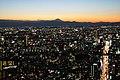 Twilight - Tokyo and Mt.Fuji - panoramio.jpg
