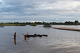 Two children in the Mekong with buffalos and boat.jpg