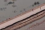 U.S. Marines Augment Pakistan Flood Relief Efforts in Sindh Province DVIDS329543.jpg