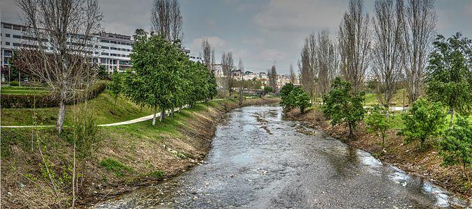 Urban stream recovered