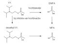 VX-metabolisme.png