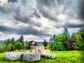 Valday, Novgorod Oblast, Russia - panoramio (1300).jpg