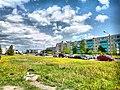Veliky Novgorod, Novgorod Oblast, Russia - panoramio (315).jpg