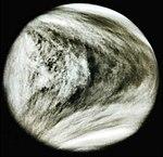 Venus-1.jpg