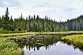 Veronika Leonets Озеро Марічейка, Черногірский хребет, Карпати, Україна.jpg