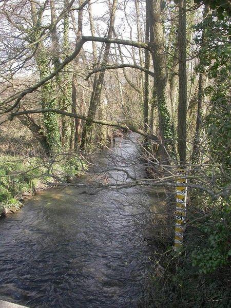 File:Verwood, River Crane downstream - geograph.org.uk - 1216753.jpg