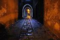 Via degli Archi in notturna.jpg