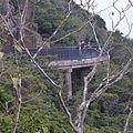 Victoria Peak, Hong Kong - panoramio (3).jpg