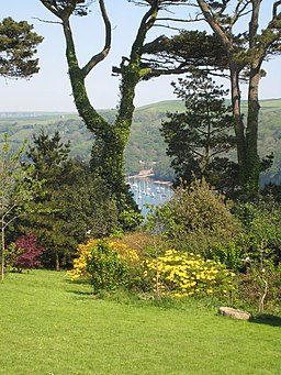 View down to the river from the grounds of Fowey Hall - geograph.org.uk - 799429