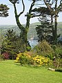 View down to the river from the grounds of Fowey Hall - geograph.org.uk - 799429.jpg