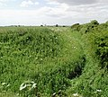 View from the corner of Foxholmes, southwest of Swine - geograph.org.uk - 190005.jpg