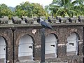 View from top-9-cellular jail-andaman-India.jpg