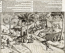 Engraving showing Dutch sailors working on Mauritius, as well as several local animals, including a dodo