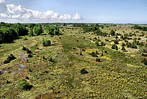 View over Suur-Pakri landscape.jpg