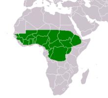 In verde l'area dell'Africa dove si è diffusa la Vitellaria paradoxa