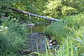Vitrupes ielejas dabas liegums (5).jpg