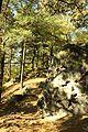 Wanderung Elbsandsteingebirge Papstdorf zum Kleinhennersdorfer Stein zur Hampelhöhle - panoramio.jpg