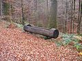 Wanderung im November - panoramio (12).jpg