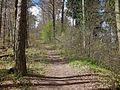 Wanderweg - panoramio (112).jpg