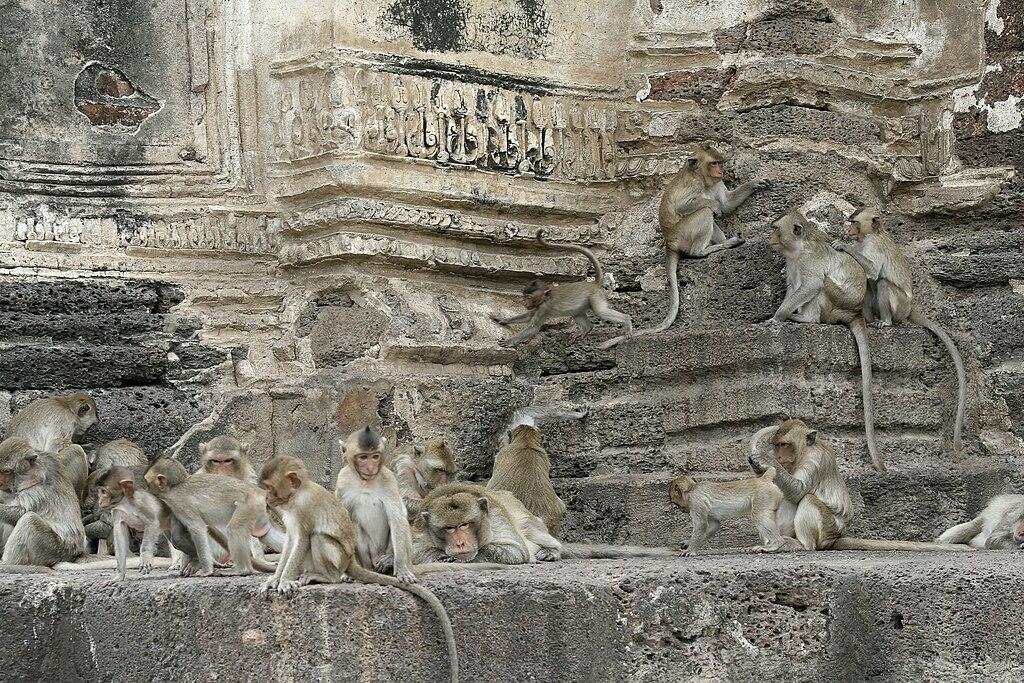 Wat Phra Prang Sam Yod-006