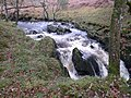 Waterfall in the Wood of Cree, Galloway Forest - geograph.org.uk - 1589063.jpg