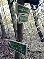 Wegweiser zwischen Kyffhaeuser und Bad Frankenhausen (Kyffhaeuser-Denkmal 2,0 km).jpg