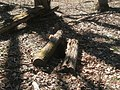 Well site, site of Lexington plantation.jpg