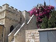 West Jerusalem Mishkenot Shaananim Bougainvillea