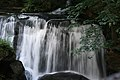 Whatcom Falls Whatcom Falls Park Bellingham Washington.jpg