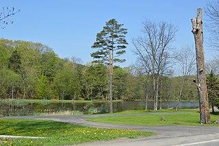White Township, Indiana County, Pennsylvania Township in Pennsylvania, United States